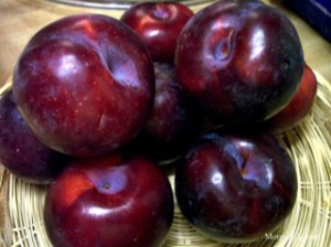 Red plum fruits