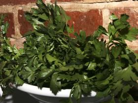 How to Grow Italian Herbs planting herbs growing herbs