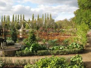 chenonceau_garden