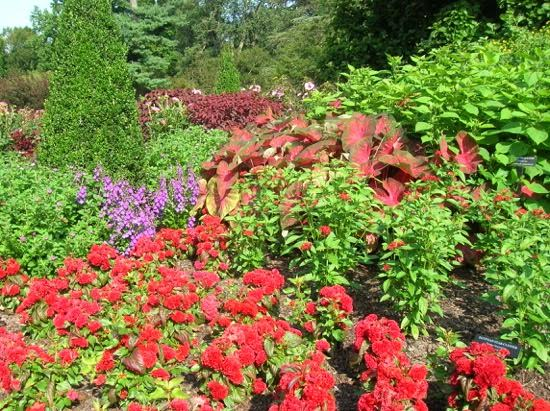 Phs Garden Tours